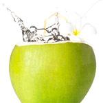 ดื่มน้ำมะพร้าวแล้วผิวสวย, ดื่มน้ำมะพร้าวแล้วผิวใส